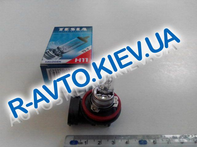 Лампа TESLA H11 12V 55W PGJ19-2 (B11101)